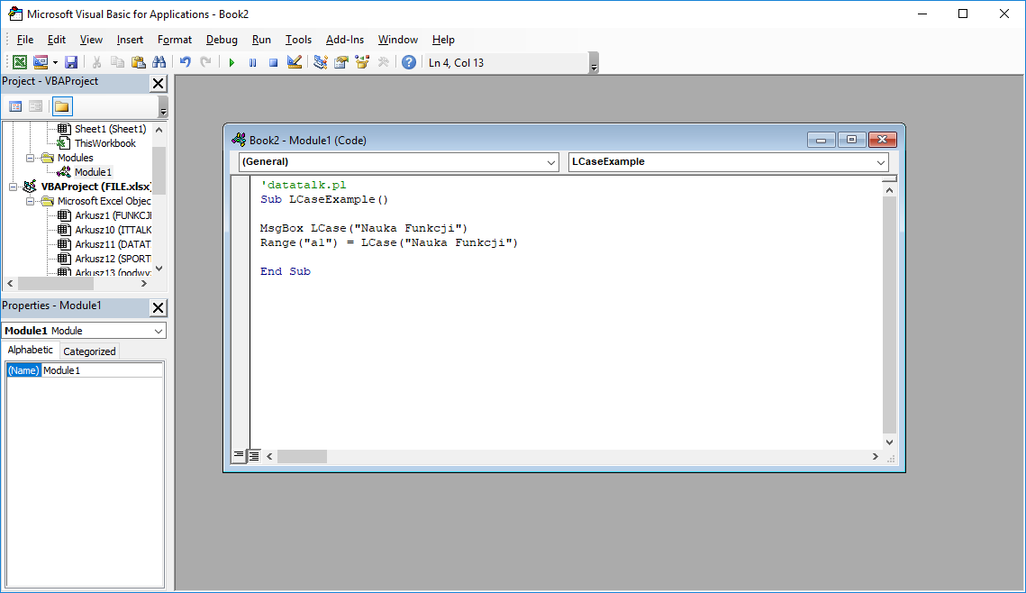 Funkcje VBA Excel – Funkcja LCase VBA